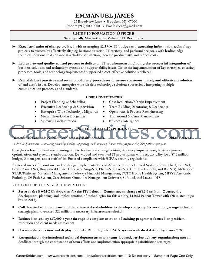 sample cio resume doc cio resume executive summary chief stunning - Sample Cio Resume