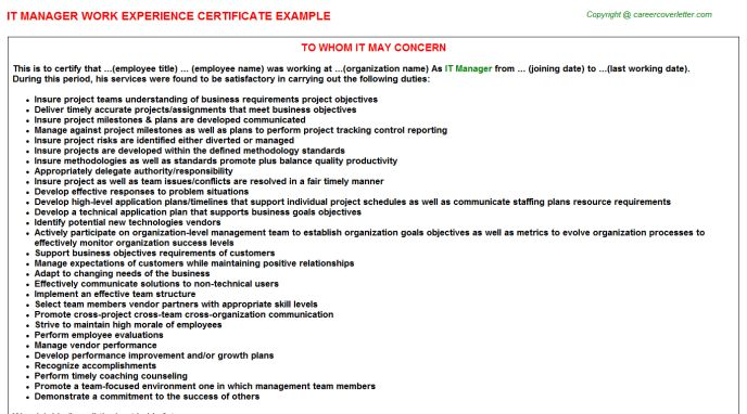 IT Manager Work Experience Certificate
