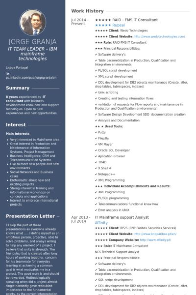 It Consultant Resume samples - VisualCV resume samples database