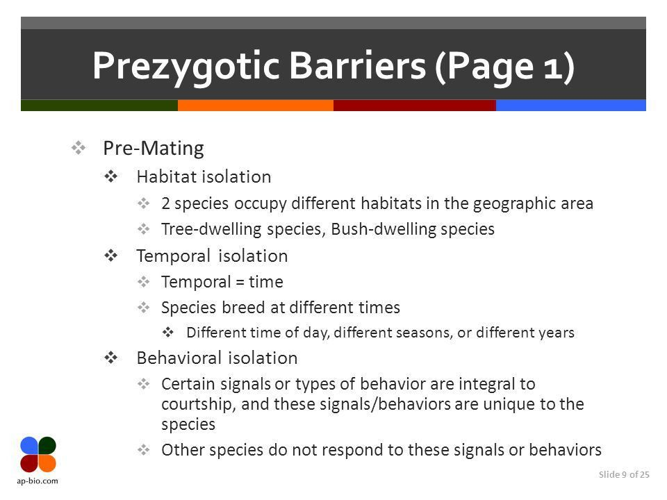 Chapter 24 Species & Speciation. - ppt download