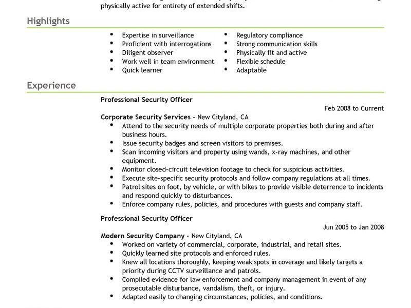 Impressive Security Guard Resume Examples 10 Best Professional ...