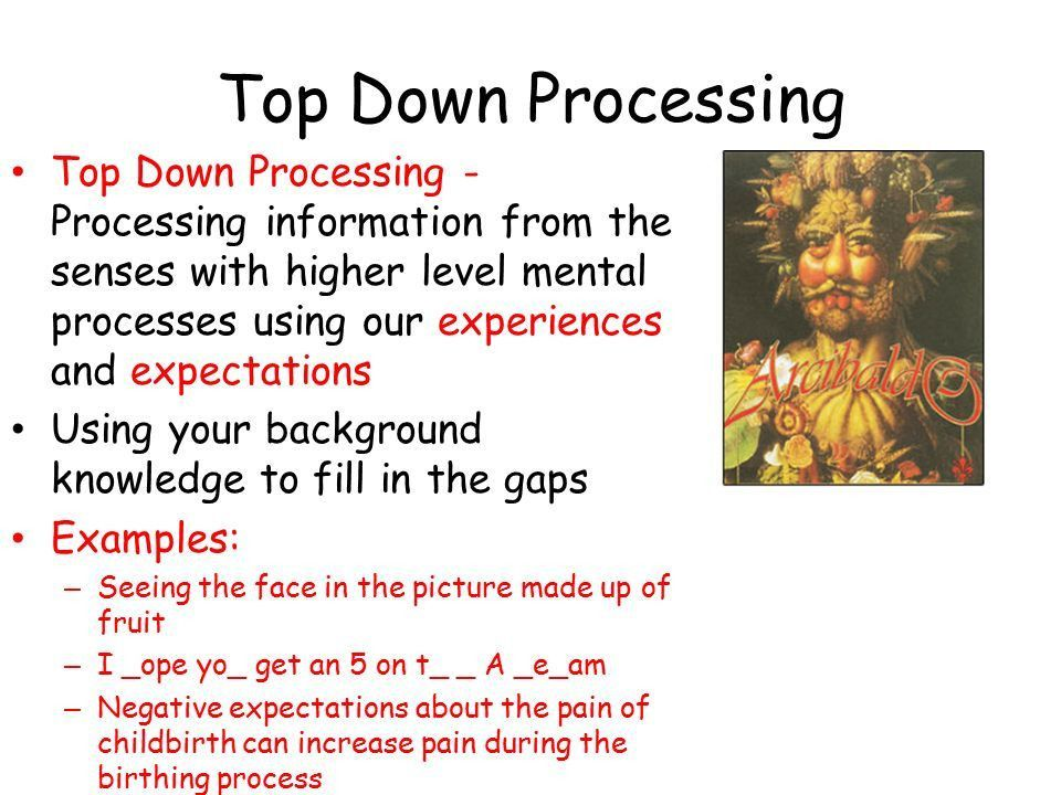 Sensation and Perception - ppt video online download