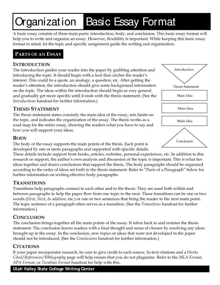 Download Basic Essay Examples | haadyaooverbayresort.com