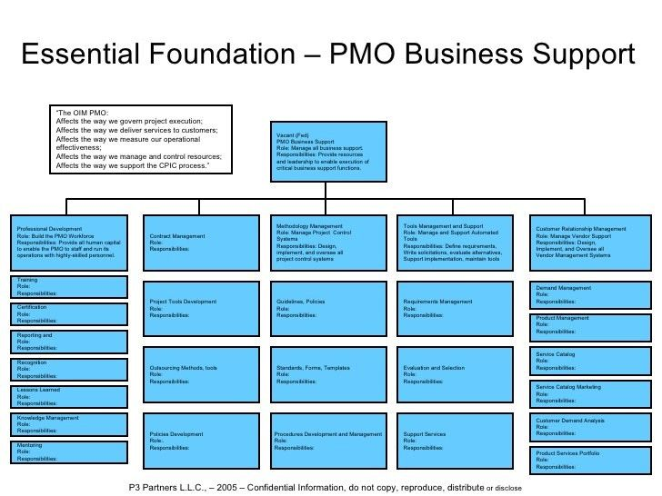 Oim Pmo It Governance Structure Cox