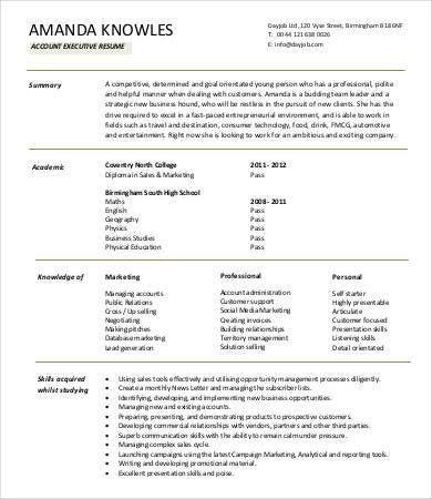 Executive Resume Example. Telecom Executive Telecom Executive ...