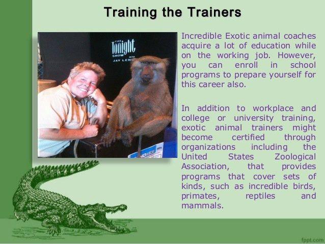 Exotic Animal Trainer Career | Stephanie Taunton