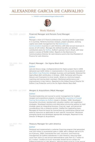 Financial Manager Resume samples - VisualCV resume samples database