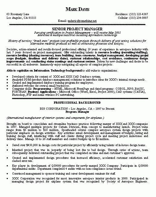 Program Director Resume - Template Examples