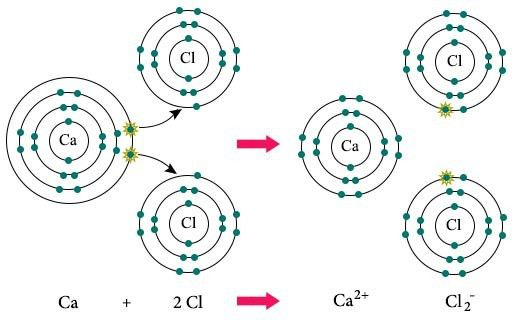 Difference Between Ionic and Covalent Bonds | Chemistry@TutorVista.com