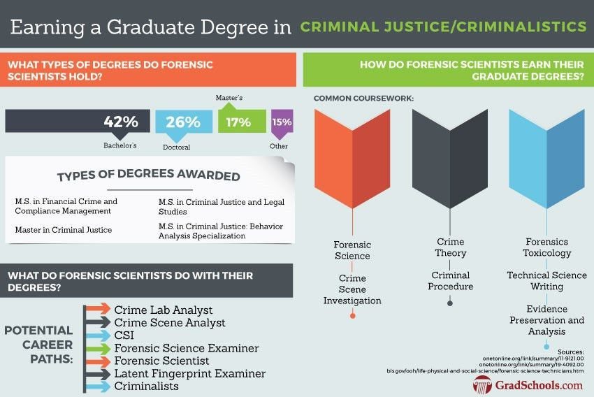 Online Masters Degrees in Criminal Justice Programs in Spain