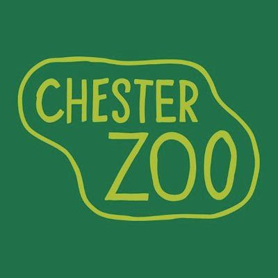 Cash Office Coordinator - 6 Month Contract | Chester Zoo | Chester ...