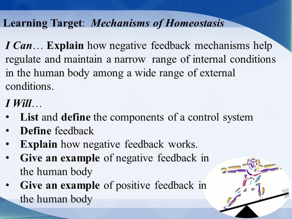 Learning Target: Mechanisms of Homeostasis I Can… Explain how ...