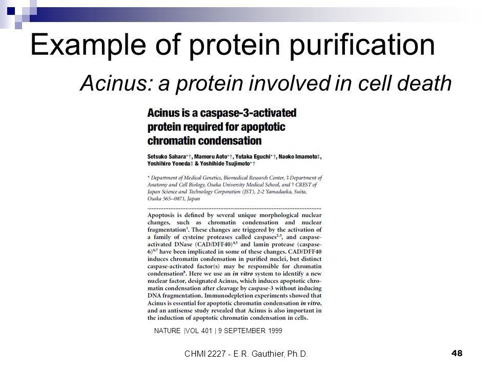 Protein purification and characterization - ppt video online download