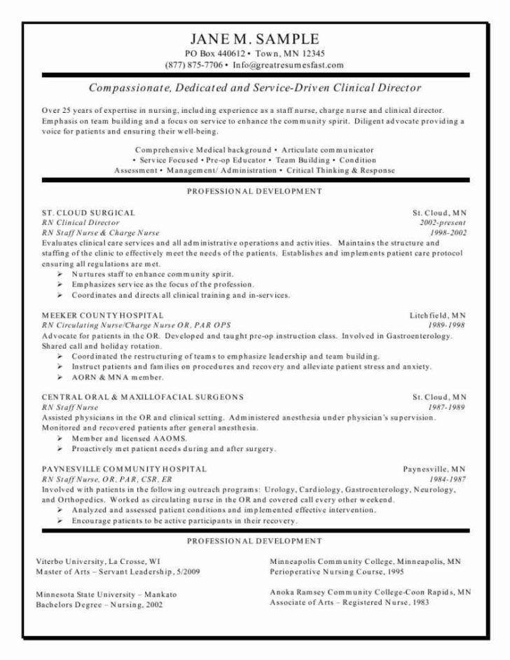 clinical auditor resume sales auditor lewesmr internal resume ...