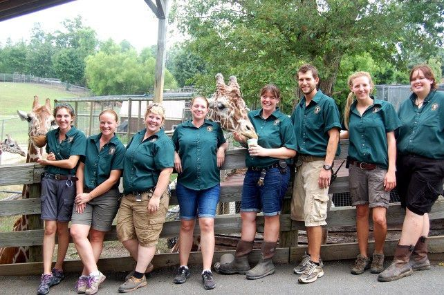 z is for zookeeper lesson plan educationcom. keloland education ...