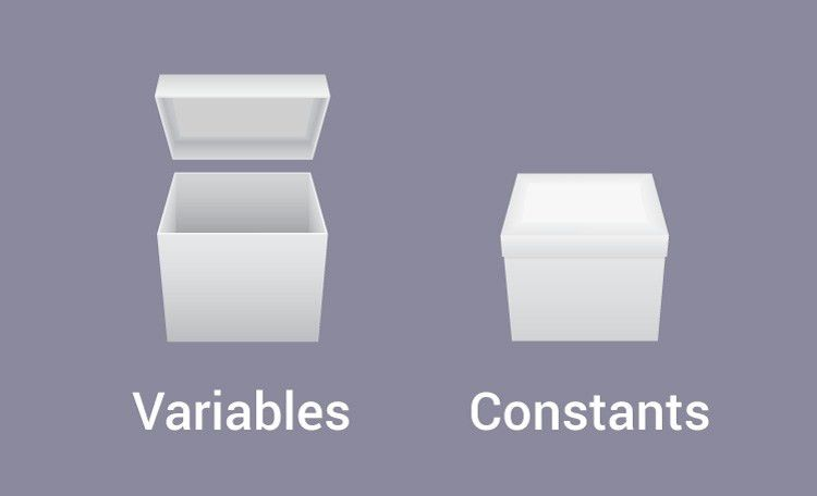 C Programming Constants and Variables