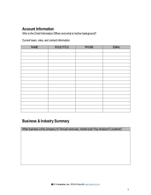 Strategic Account Plan Template