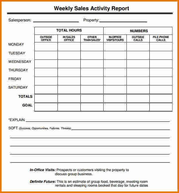 5+ Sales Call Report Template   Expense Report