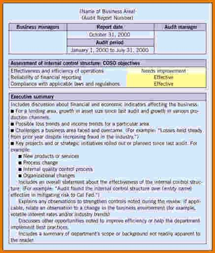 8+ Internal Audit Report Template   Expense Report