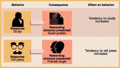 PSY 2012: Unit 7: Positive and Negative Reinforcement, Shaping and ...