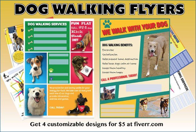 Effective Dog Walking Flyer: design and content tips