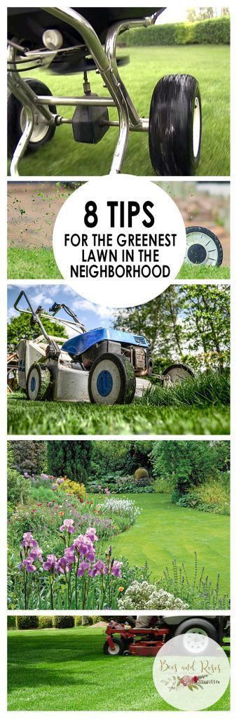 22 best Lawn Care images on Pinterest | Garden ideas, Green lawn ...