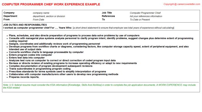 Computer Programmer Chief CV Work Experience