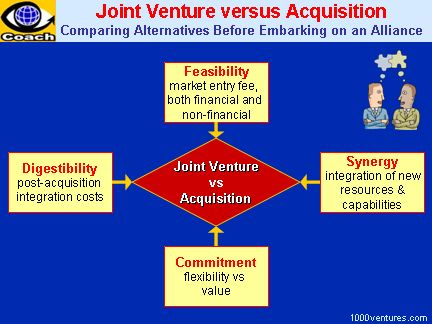 JOINT VENTURES: Why, What, and How (Your first-ever Business e-Coach)