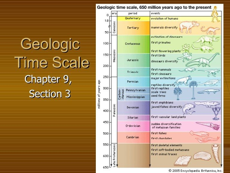 Geologic Time Scale 9