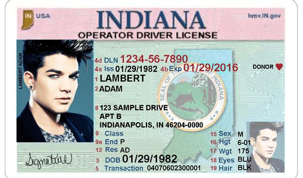 Indiana Driver's License Editable PSD Template Download - $5.00 ...