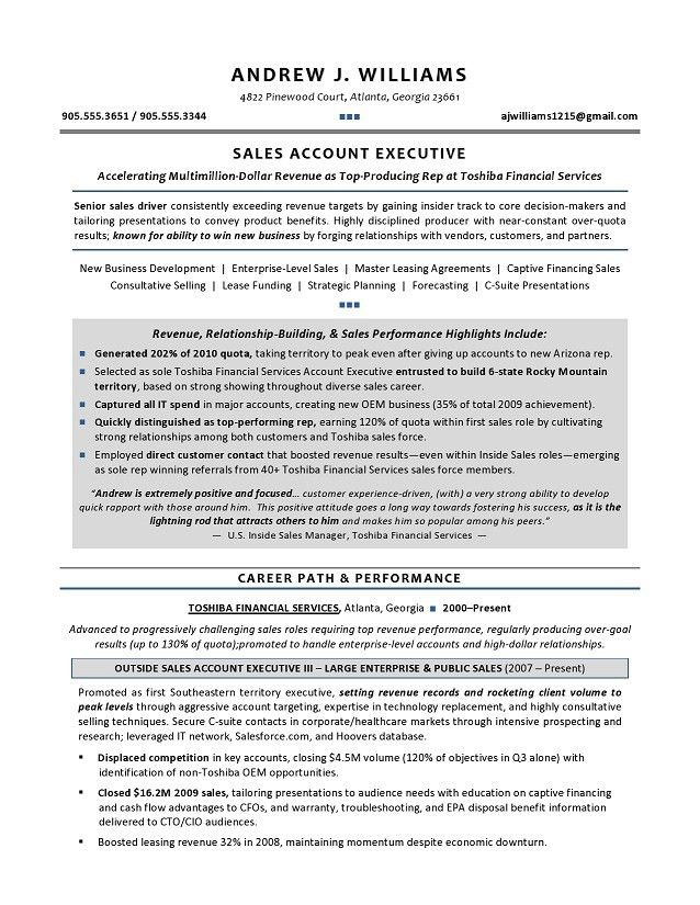 chief executive officer resume sample federal resume samples