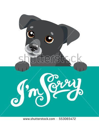 Apology Stock Images, Royalty-Free Images & Vectors | Shutterstock