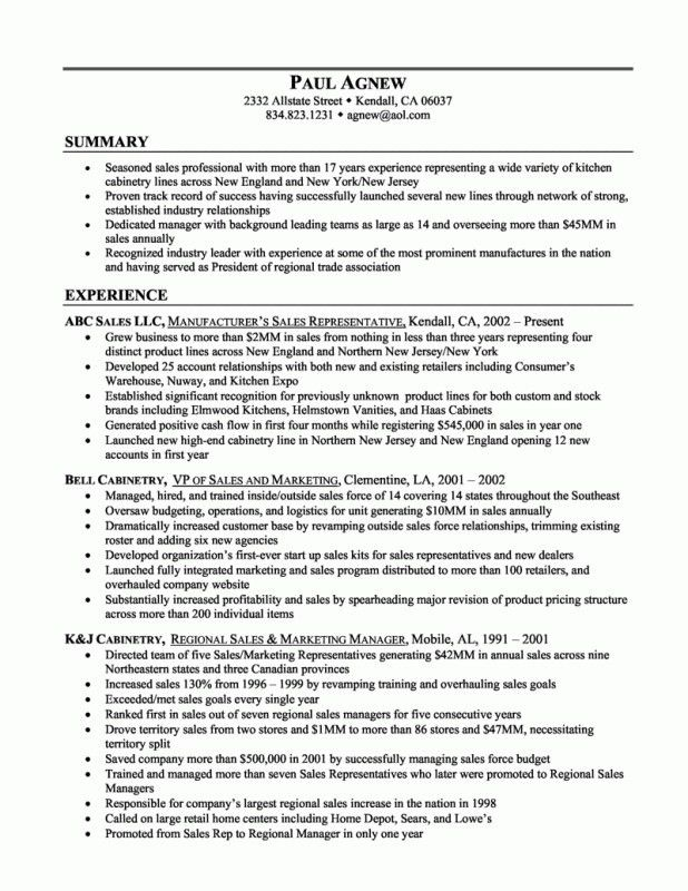 resume summary examples sales resume example summary on resume