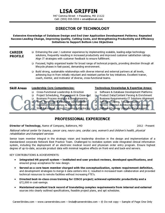 sample it director resume. it director resume sample it resumes ...