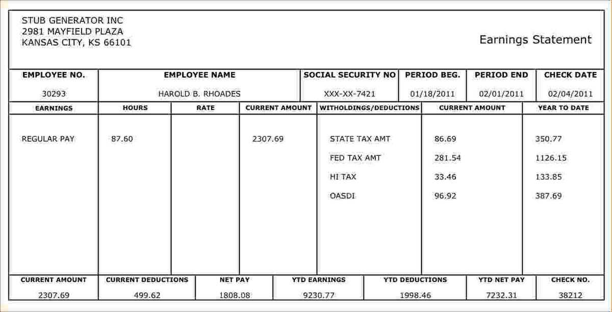 microsoft office pay stub template