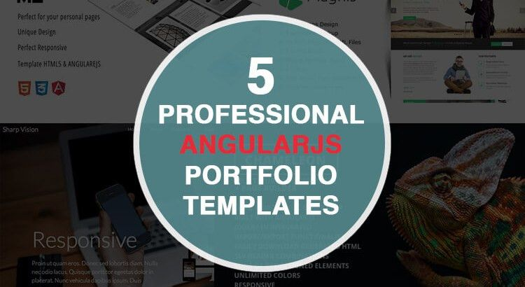 5 of the Best Professional AngularJS Portfolio Templates - Themes ...
