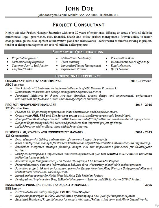 Executive Project Consultant Resume Example - Business Manager