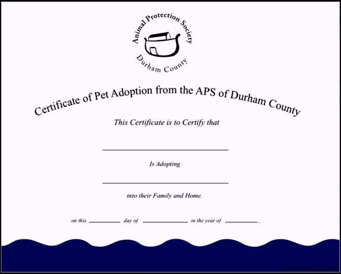 Adoption Certificate Template. Quirky Artist Loft: Littlest Pet ...
