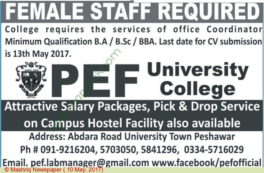 5-17 Female Coordinator Jobs in PEF University College
