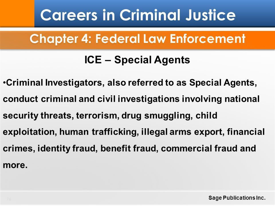 Chapter 4: Federal Law Enforcement 1 Careers in Criminal Justice ...