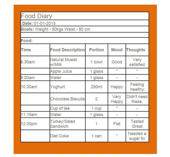 Sample Food Diary Template | Test Case Template Download