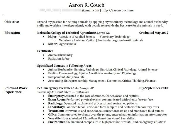 Download Building A Resume | haadyaooverbayresort.com