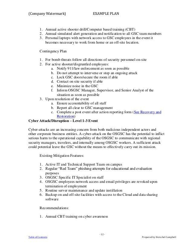 Example Crisis Action Plan (1)