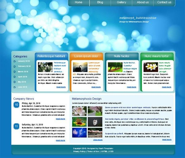 free website template - metamorph bubblesonblue | Free Website ...