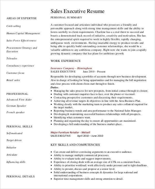 Executive Resume Examples - 27 Free Word, PDF Documents Download ...