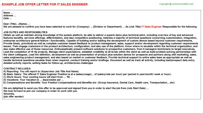 IT Sales Engineer Offer Letter