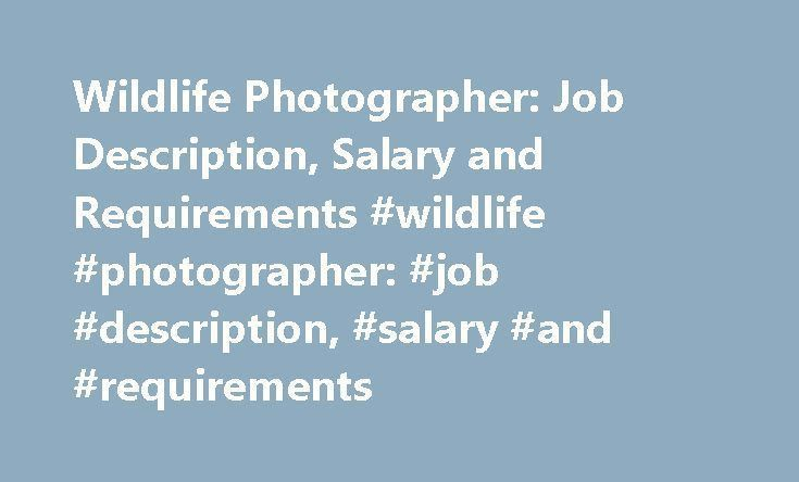 Wildlife Photographer: Job Description, Salary and Requirements ...