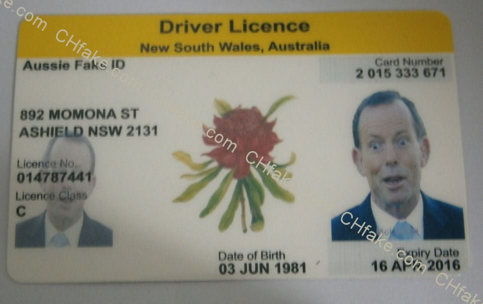 Buy Queensland Fake ID – Buy Fake ID | Scannable Identification