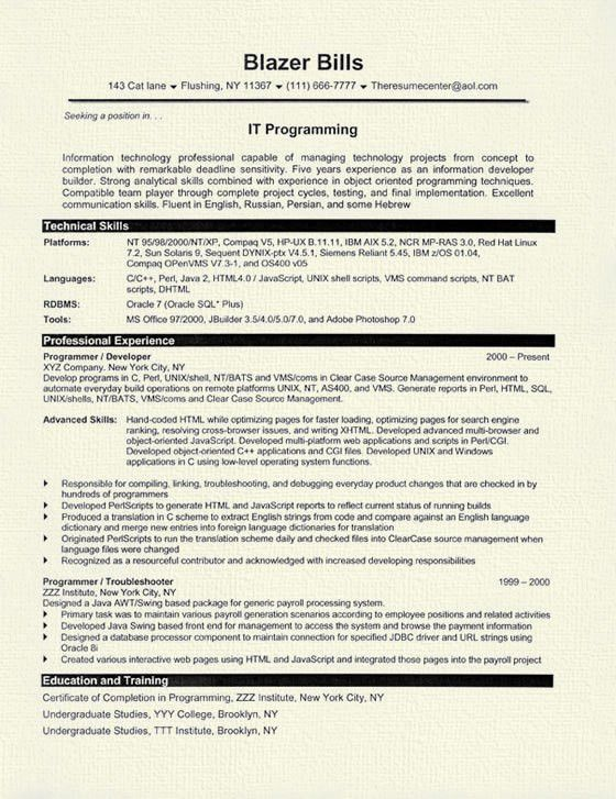 Programmer Resume Example
