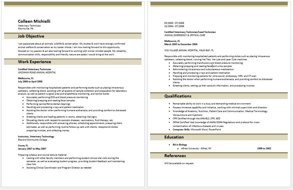 Entry Level Resume No Experience - formats.csat.co